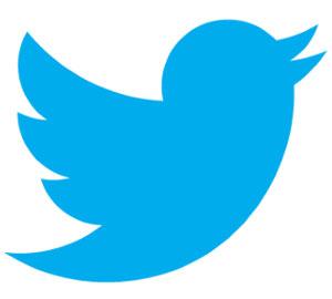 twitter-pajaro-azul